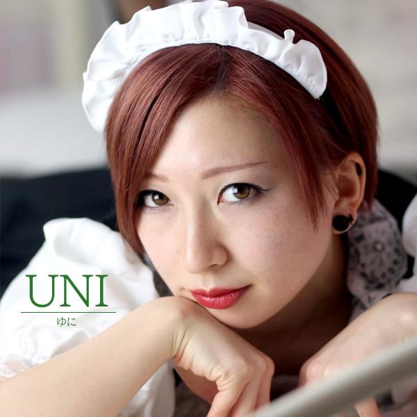 UNI-FairlyPort